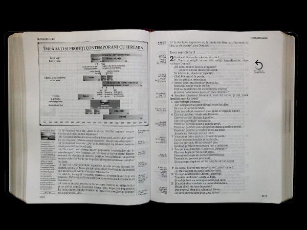 Biblia de studiu inductiv