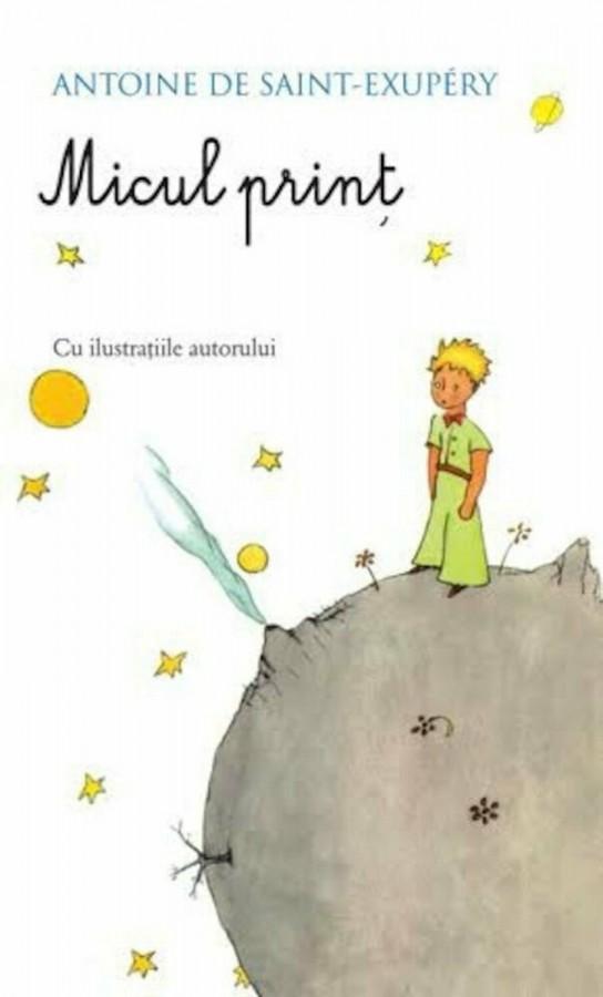 Micul print - Povestiri pentru copii (10-14 ani)
