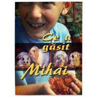 Ce-a gasit Mihai - Povestiri creștine pentru copii