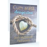 Cum arata dragostea de Josh McDowell
