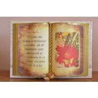 Carte decorativa - Iubitei mele... Cu tine am invatat...(10x14 cm)