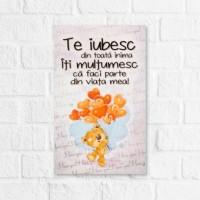 Tablou motivational (16x26cm) - Te iubesc