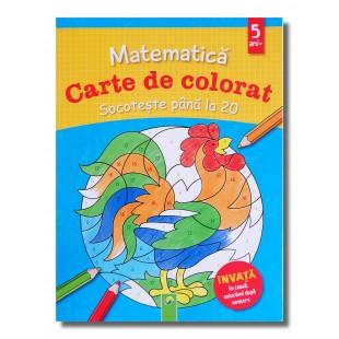 Carte cu activitati - Matematica - Carte de colorat