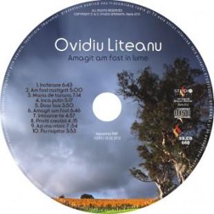 Amagit am fost in lume de Ovidiu Liteanu