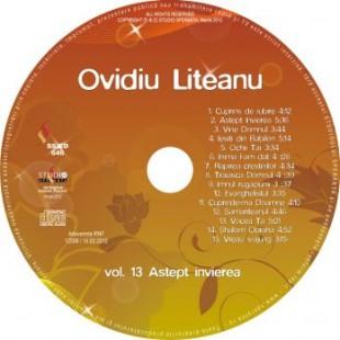 Astept invierea, vol.13, Ovidiu Liteanu