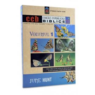 Cheile Consilierii Biblice, vol. 1 de June Hunt