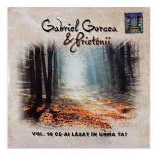 Gabriel Gorcea & prietenii - Ce-ai lasat in urma ta, vol.10