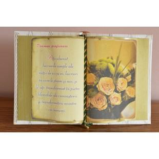 Carte decorativa - Doamnei profesoare... (14x21 cm)