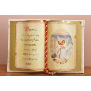 Carte decorativa - Prietenii sunt ingerii care...(10x14 cm)