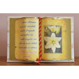 Carte decorativa- Nimeni altcineva nu va sti vreodata...(14x21 cm)
