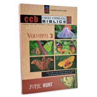 Cheile Consilierii Biblice, vol. 2 de June Hunt