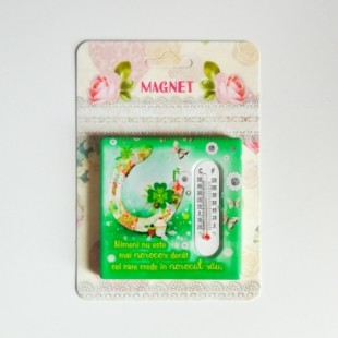 Magnet ceramic - Noroc