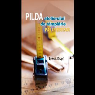 Broșura – Pilda atelierului de tâmplărie falimentar (set 10 buc.)