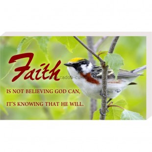 Placheta birou- Faith