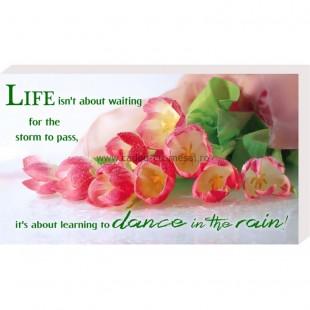 Placheta birou - Life isn,t about waiting